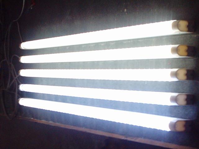 日光燈的結構